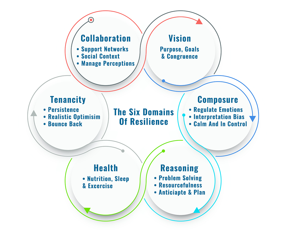 The Six Domains Of Resilience - Sales Growth